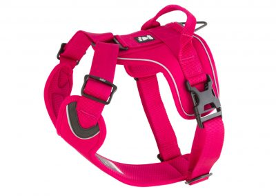 Active-Harness-cherry