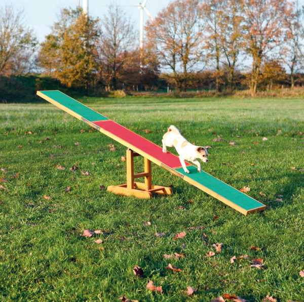 Dog Activity Agility Wippe
