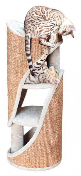 Cat Tower Jasone