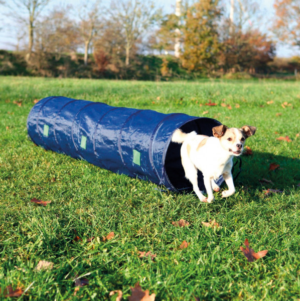 Dog Activity Agility Tunnel