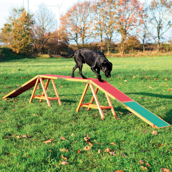 Dog Activity Agility Steg