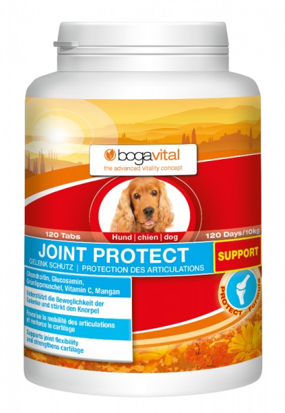 bogavital JOINTS PROTECT SUPPORT