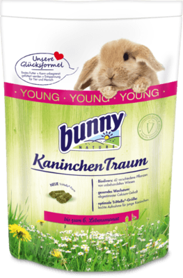 KaninchenTraum young