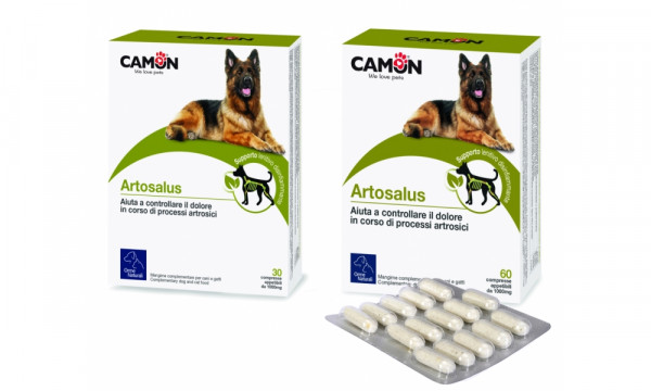 Orme Naturali Care - Artosalus (Tabletten)